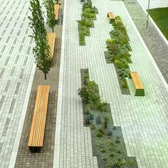 External seating for National High Speed Rail College Architecture Courtyard, Landscape Architecture Design, Landscape Elements, Green Landscape, Design D'espace Public, Urban Ideas, Paving Design, Urban Planning, Speed Rail