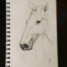 Night horse #design4ndmore  #saintnazaire #loireatlantique #sketch #sketchbook #sketchbooks #drawing #draw #croquis #dessin #cheval #horse #horses #eye #instadaily #instadraw #instaday #animals Sketchbooks, Horses, Eye, Photo And Video, Night, Drawings, Painting, Animals, Instagram
