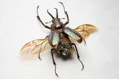 "Robotic insects | ""Spiritual Totatema"" prj."
