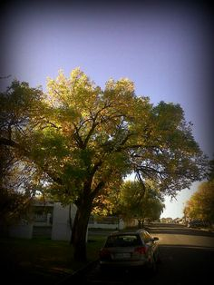 Autumn in the Free state 2013