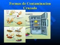 Pesquisa Formas de descartar alimentos. Vistas 9273.