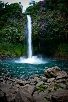 Photo: La Fortuna Waterfall is located in central Costa Rica,in the Alajuela Province. The #waterfall drops about 70-75 meters and is located at the base of the dormant Chato Volcano. It is fed by the Arenal #river ,which travels through the rain #forest in the arenal #mountain range until it plunges over the #cliff ,forming this waterfall.  #wiki