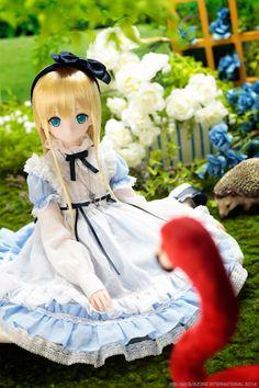 Alice Time Of Grace: Azone Alice 48cm Dolls