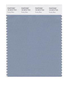 PANTONE 16-4010X Dusty Blue Wedding Color #1