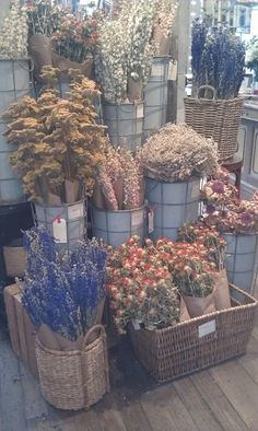 Dried flowers display