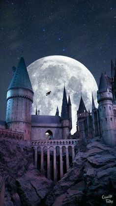 VISIT FOR MORE Harry Potter Hogwarts Wallpaper Love Harry Potter? Check out our Harry Potter Fanfiction Recommended reading lists – fanfictionrecomme… Harry Potter Tumblr, Memes Do Harry Potter, Harry Potter London, Fans D'harry Potter, Harry Potter Pictures, Harry Potter Hogwarts, Always Harry Potter, Potter Facts, Magia Harry Potter