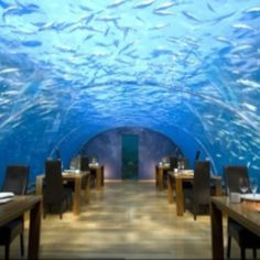 Cool Places to Work: Under the Sea.