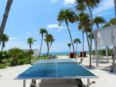 Ping Pong on the beach?  Heck yes!
