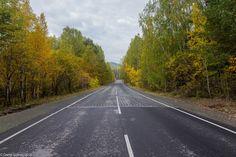 Autumn road - null