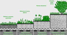 Systèmes de végétalisation
