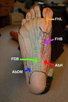 Athletes Treating Athletes - self massage of foot muscles and tendons; plantar fasciitis