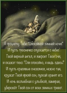 Good Night, Movie Posters, Thesis, Good Night Greetings, Good Day Quotes, Be Nice, Pictures, Nighty Night, Have A Good Night