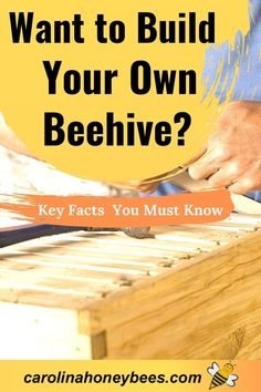 Everything you need to know if you want to build a beehive of your own. Hive designs and material choices are important for those wondering how to build their own beehives. #carolinahoneybees
