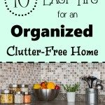 1 Sure Way To Get Rid Of Spiders And Insects In Your Home - Double the Batch