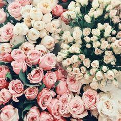 Kokulu çiçekler