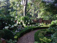 Gravel path bordered by boxwoods - via In Bloom
