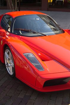 Ferran Enzo. @designerwallace  www.dealerdonts.com