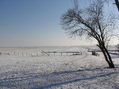 Fazenda em Willeskop, no inverno. Província de Utrecht, Países Baixos.  Fotografia: Onderwijsgek.
