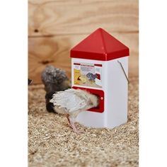 Chick Feeder Dual Port, 5 LB Chicken Feeders, Chicken Coops, Frozen Free, Baby Chickens, Small Birds, Quail, Little Babies, Coops, Little Birds