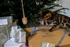 Miwo Design. Eda Ekollon i Ekologisk furu. Kattleksak. Bengal. Julklapp. Gift Wrapping, Design, Gifts, Gift Wrapping Paper, Presents, Wrapping Gifts, Favors, Gift Packaging