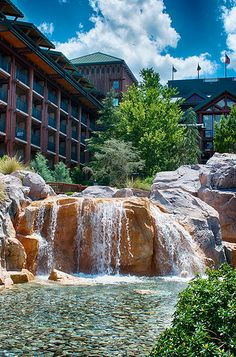 Wilderness Lodge just there one month ago.