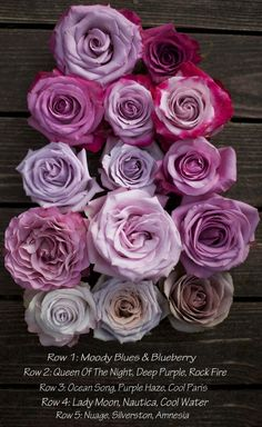 Color Study of Lavender and Purple Roses by Harvest Roses - http://www.harvestwholesale.com Cool Water, Cool Paris, Blueberry, Rock Fire, Ocean Song, Purple Haze, Amnesia, Silverston, Moody Blues, Queen of the Night, Deep Purple, Lady Moon, Nautica, Nuage