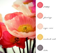 Color Inspiration | #pink #poppy #flowers #color #inspiration