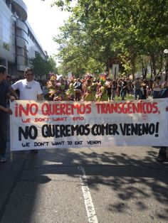 """Dijimos """"Tolerancia cero a los transgénicos"""""""