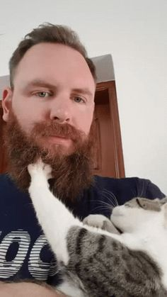 Animal Lovers – Communauté – Google+
