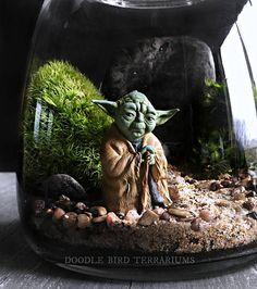 Star Wars Yoda Terrarium with Live Plants Large scale desktop terrarium featuring a mini scene with Star Wars Decor, Decoration Star Wars, Star Wars Art, Glass Terrarium Containers, Garden Terrarium, Terrarium Ideas, Terrarium Scene, Mode Steampunk, Nerd Crafts