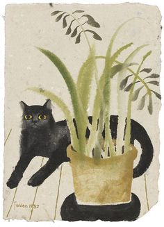 Coyote Atelier illustration inspiration: Mary Fedden | Black Cat and Plant.