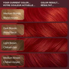 vidal sassoon hair color 6rr London Luxe | Vidal Sassoon