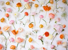 7 Easy Photo Booth Backdrop Ideas - Project Wedding
