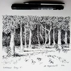 Inktober Day 25  Fountain pen and brush pen   A little wood near us,  trying to give the impression of the depth to the trees.   #jodegenhart #inkdrawing #inktober #inktober2016 #penandink #pendrawing #drawing #sketch #sketchbook #mibcreativeladies
