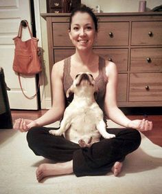 funny-animals-doing-yoga-4 @Maddie Wilder these are so cute. @Sarah Chintomby Marsh @Sagan Caddell Sidman