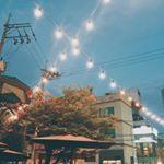 "18 Likes, 1 Comments - @park.mjeyyy on Instagram: ""디즈니성 너무 멋있오✨✨ #상해 #상해디즈니랜드 #디즈니성 #disneycastle #shanghai #shanghaidisneyland #disneyland #5dmark3"""