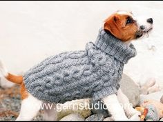 How to knit a dog coat - YouTube