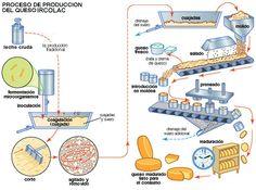 QUESOS ARTESANALES-QUESOS ECOLÓGICOS-VENEZUELA PRODUCTIVA - VENEZUELA SOCIAL - VENEZUELA POLITICA -VENEZUELA LACTEA - VENEZUELA ARTESANAL - VENEZUELA AGROPECUARIA - VENEZUELA AGROTURISMO - QUESOS ARTESANALES - ECOLOGICOS