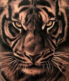 tattoos for men boys Tiger Tattoo Back, Tiger Tattoo Sleeve, Lion Tattoo Sleeves, Tiger Tattoo Design, Tattoo On, Body Art Tattoos, Dragon Tattoos For Men, Arm Tattoos For Guys, Tiger Tattoos For Men
