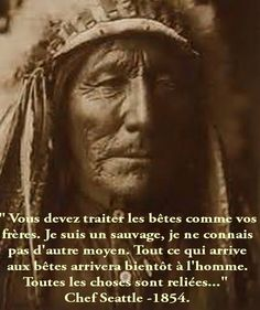 """""""YOU MUST TREAT YOUR ANIMALS AS FRERES.JE AM A SAUVAGE.JE DO NOT KNOW WHAT ELSE MOYEN.TOUT HAPPENS TO ANIMALS COMING SOON TO MAN. ALL THINGS ARE CONNECTED ...."""" ... QUOTE OF CHIEF SEATTLE .... 1854 .......PARTAGE OF TULPA LA VOIE DE LA SAGESSE ET DE LA SPIRITUALITÉ...........ON FACEBOOK.............."""