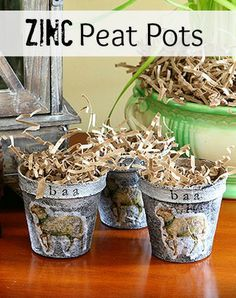 DIY peat pots for spring with an industrial flair.  Fun and easy to make.
