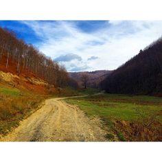 Iconosquare – Instagram webviewer Country Roads, Photography, Instagram, Art, Art Background, Photograph, Fotografie, Kunst, Photoshoot