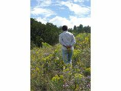 Canon City, Fremont County, Colorado land for sale - 41.03 acres at LandWatch.com