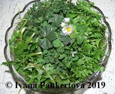 divoký salát Lucie Tempura, Bloody Mary, Ivana, Parsley, Smoothie, Herbs, Food, Shake, Meal