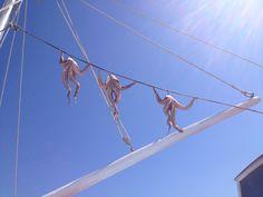 Octopus drying - Mykonos town - Mykonos, Greece   Karoliina Kazi - read more at www.karoliinakazi.com