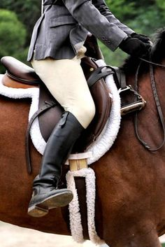 "In my opinion, every person who aspires to the title of ""equestrian"" should have to master the art of riding without stirrups."