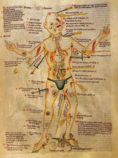 """""""Wound Manis an illustration which first appeared in European surgical texts in the Middle Ages. Itlaid out schematically the various wounds a person might suffer in battle or in accidents"""""""