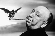 USA, British filmmaker Alfred Hitchcock, during the filming of The Birds, 1962, Philippe Halsman