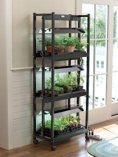 Need! Compact 3-Tier Sunlite® Garden - Gardener's Supply Company