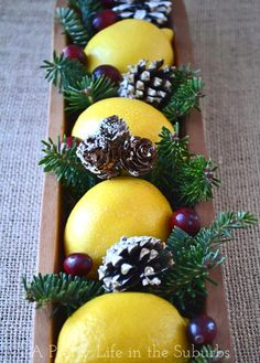 Lemon Christmas Centrepiece - would be pretty also in sugar mold piece Christmas Colors, All Things Christmas, Christmas Holidays, Christmas Crafts, Xmas, Christmas Ideas, Holiday Ideas, Christmas Tablescapes, Christmas Centerpieces